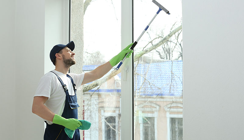 Window Cleaning in Southeast Michigan