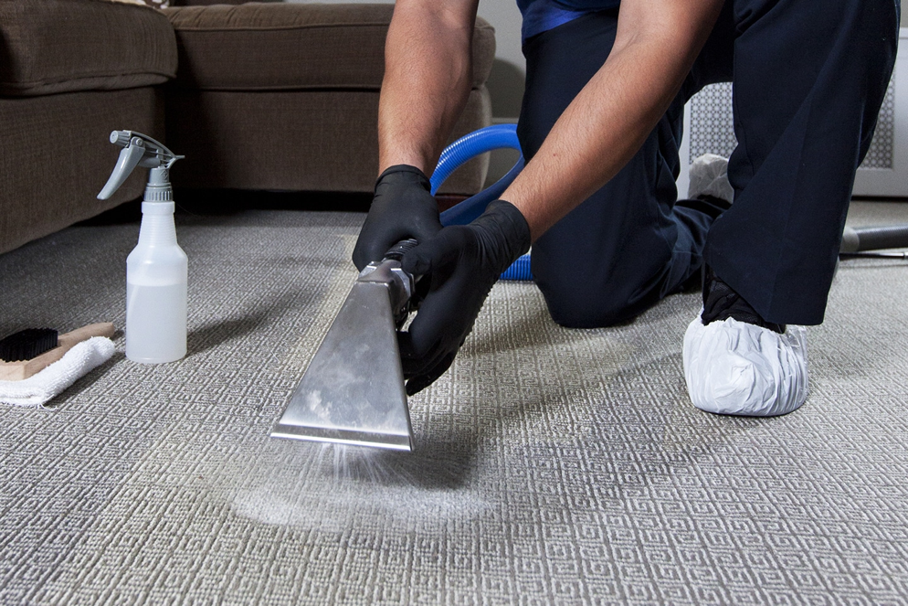 Why get your carpets professionally cleaned?